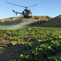 Heli Ag Hawke's Bay Spraying